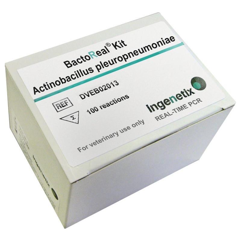 BactoReal Kit...