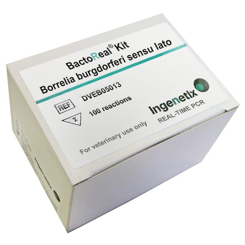 BactoReal Kit Borrelia...