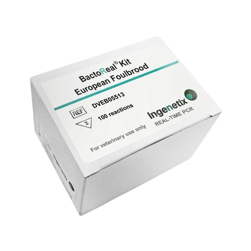 BactoReal Kit European...