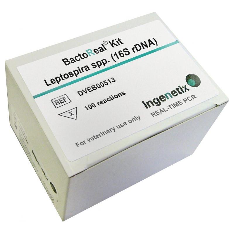 BactoReal Kit Leptospira...