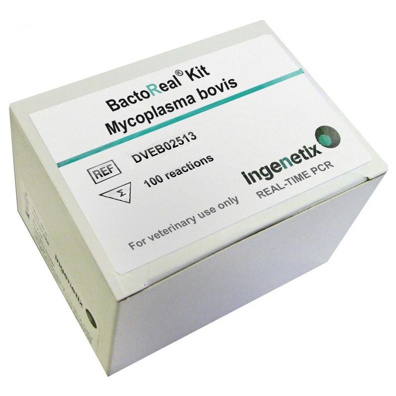 BactoReal Kit Mycoplasma bovis
