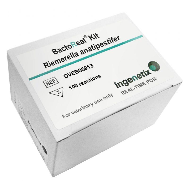 BactoReal Kit Riemerella...