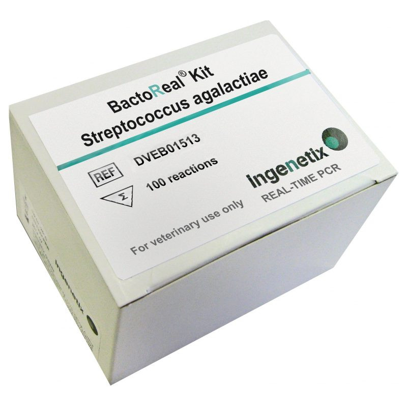 BactoReal Kit Streptococcus...