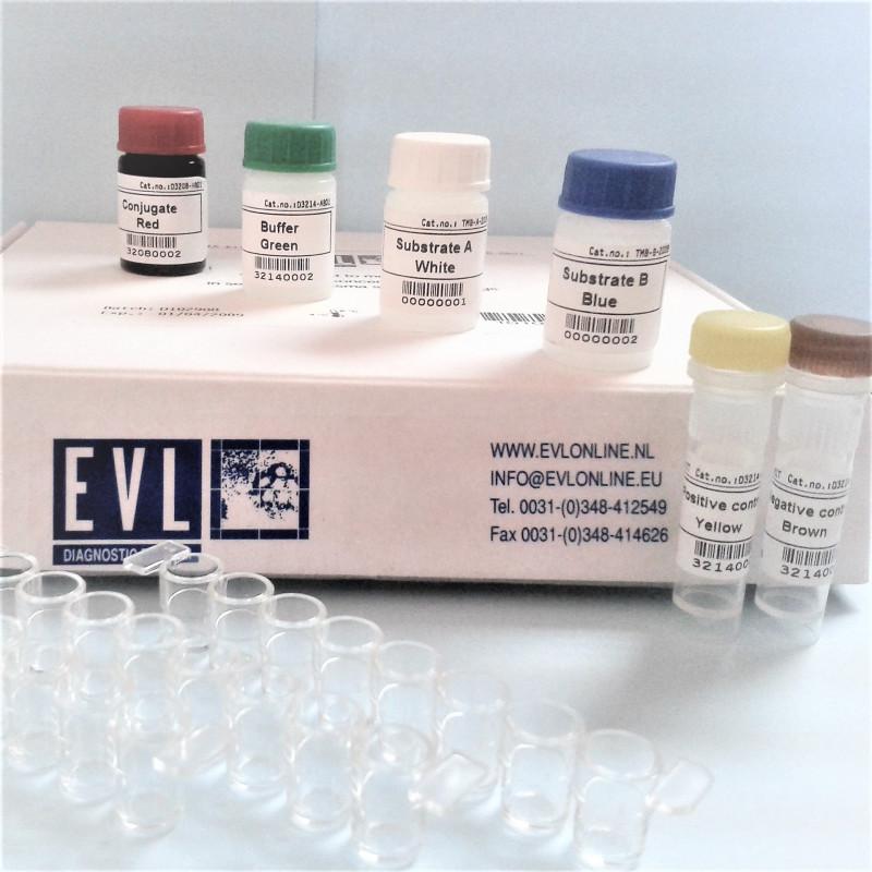 FeLV gp70 ab virus coated EIA