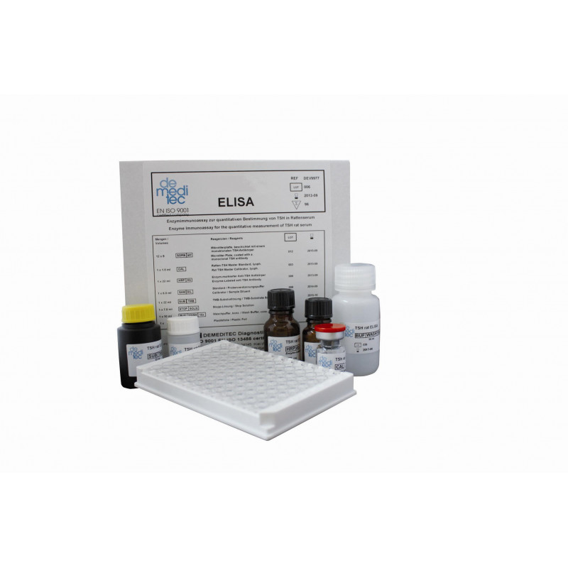 Insulin Rat ELISA