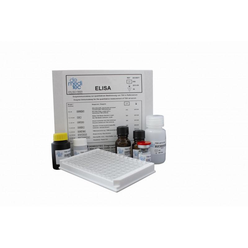 Insulin Rat ELISA