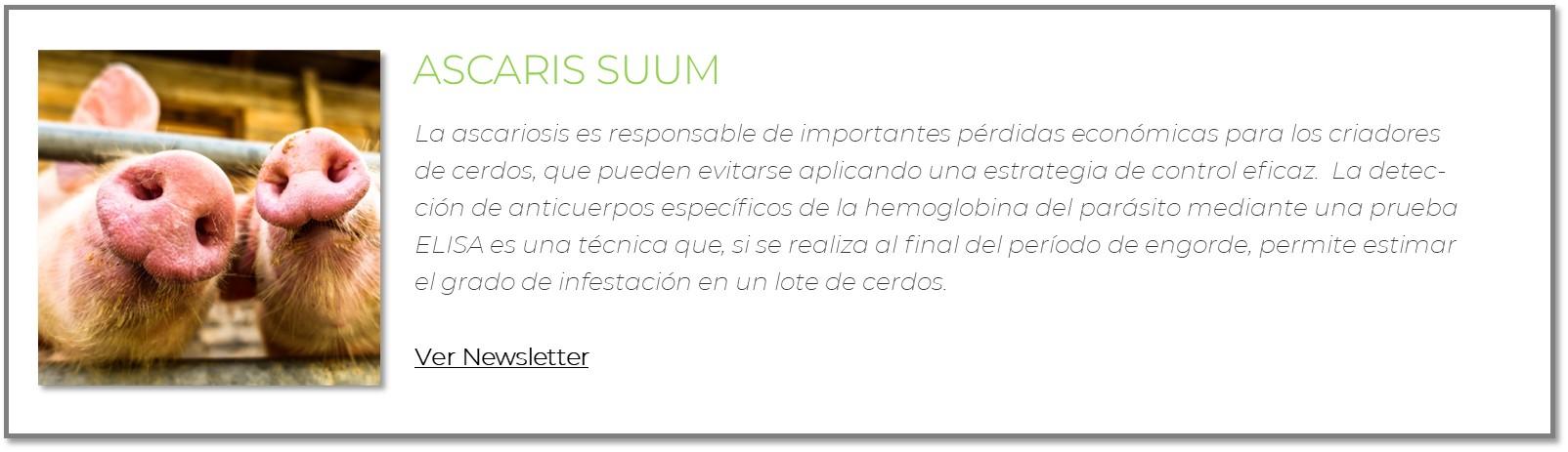 Newsletter_Ascaris_Web.jpg